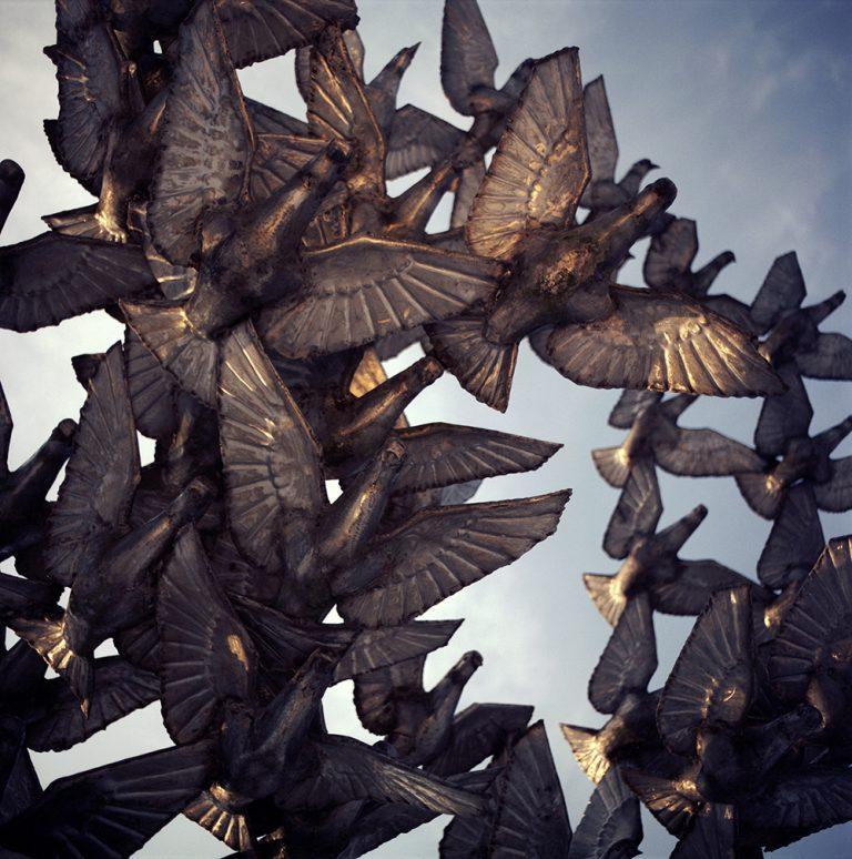 """""""Pigeons"""", 2011, 50×50, лимитирана серия 2/10"""