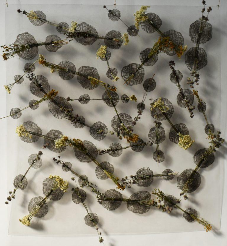 Влиянието на природата III, 2020, инсталация, смесена техника – вералит, мастило и билки, 106 х 100 x 10 см.