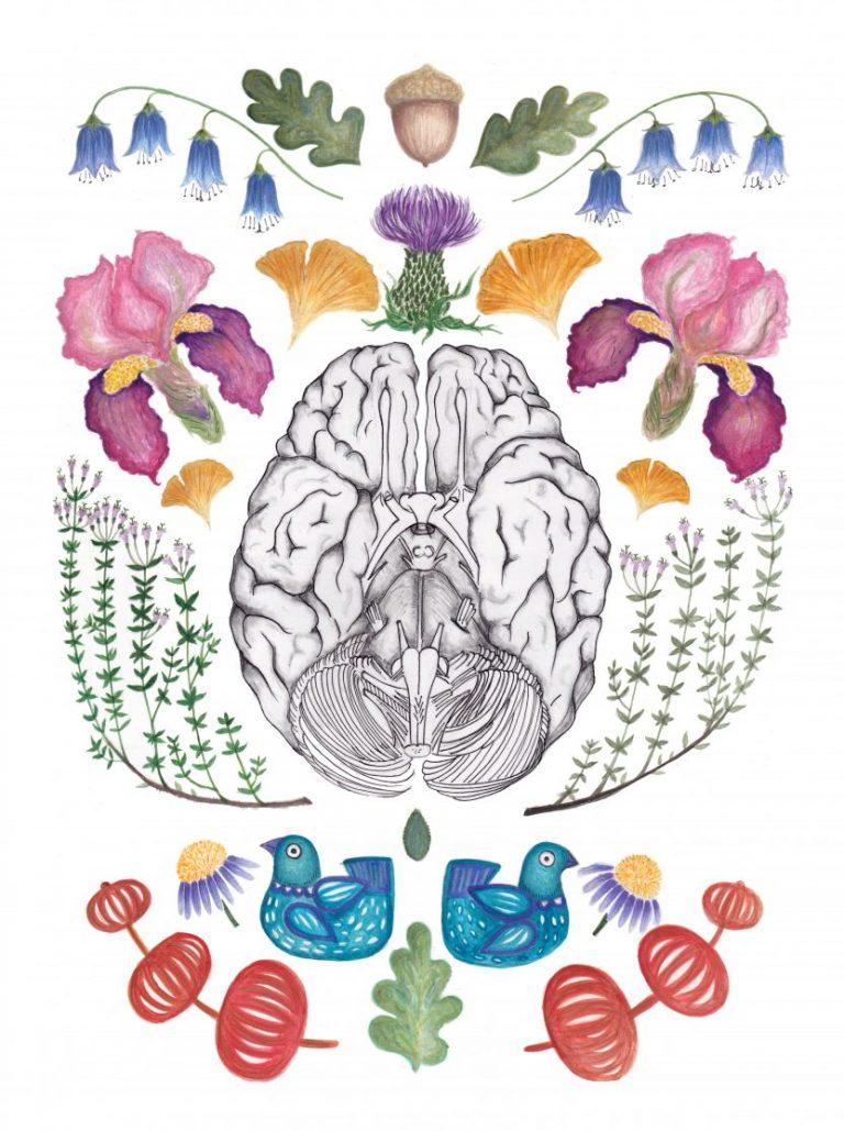 Brain, 2020, акварел и тънкописец – принт върху хартия – Fine Art Paper, 42 x 30 см.