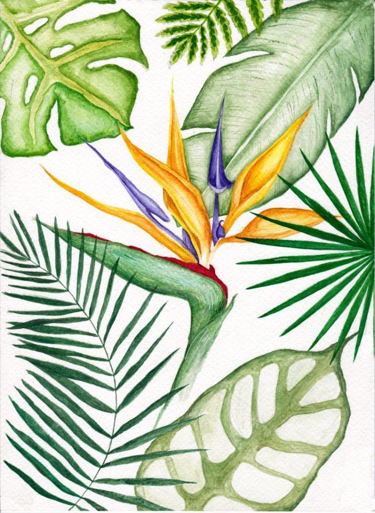Tropical, 2020, акварел – принт върху хартия – Fine Art Paper, 42 x 30 см.