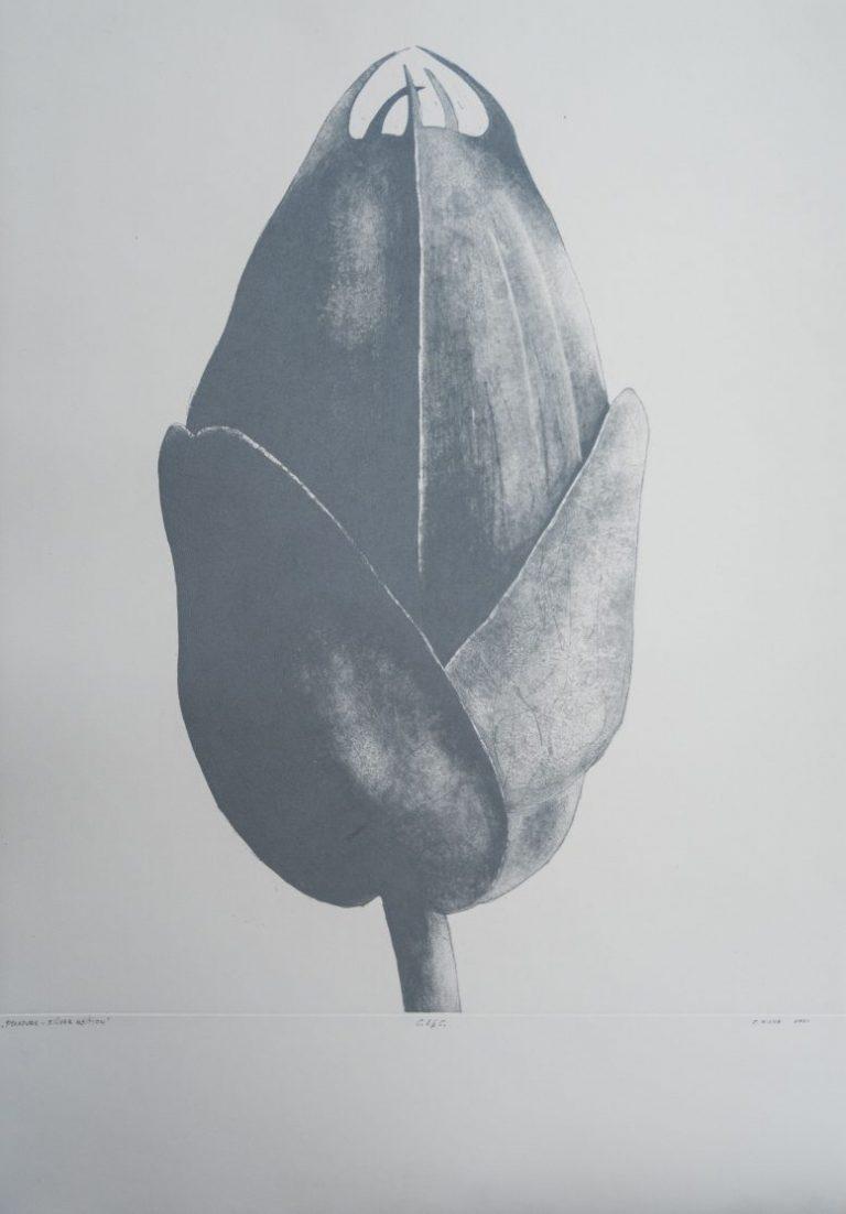 Pleasure I – Silver edition, 2021, Etching, aquatint on Fabriano 285 Fine Art Paper, 70 x 50 cm.