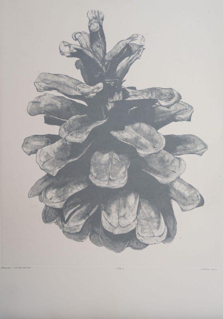 Pleasure II – Silver edition, 2021, Etching, aquatint on Fabriano 285 Fine Art Paper, 70 x 50 cm.