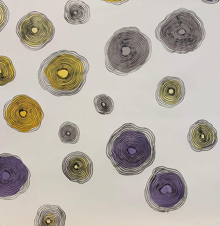Билки IV, 2020, суха игла и висок печат, единичен отпечатък, 47 х 47 см.