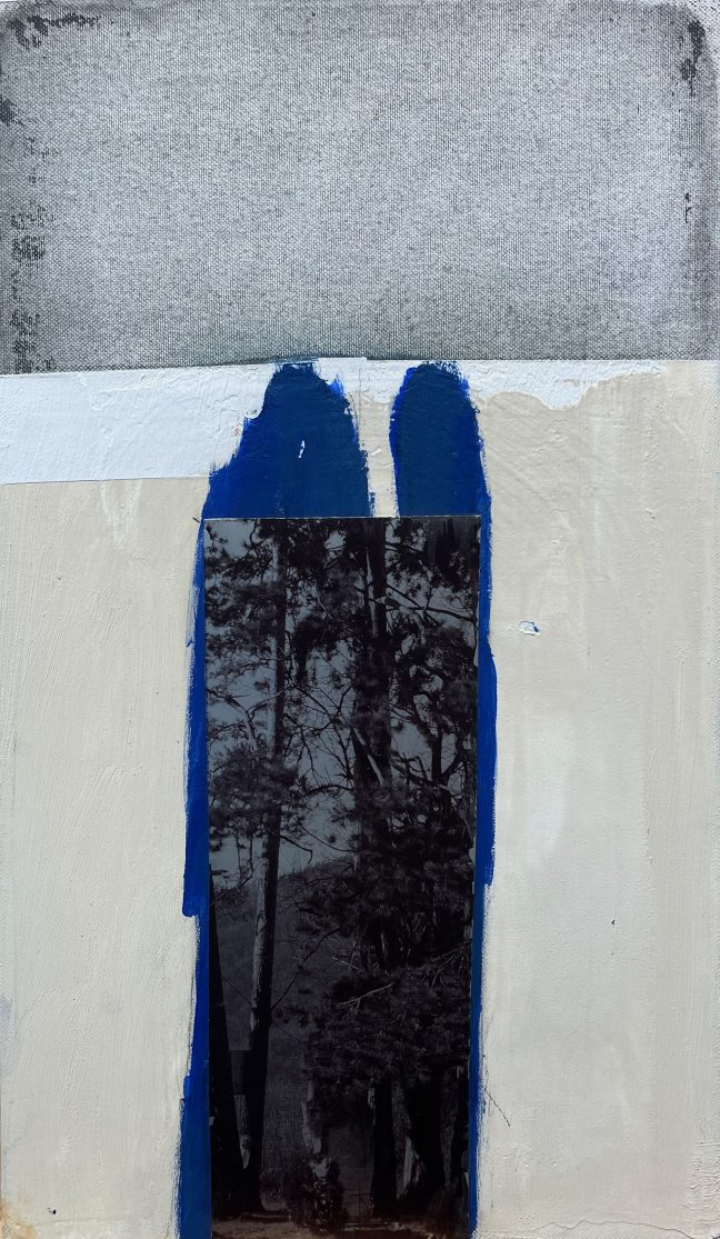 Forest, 2020, mixed media on canvas, 46 x 27 cm.