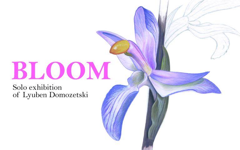 BLOOM – самостоятелна изложба на Любен Домозетски