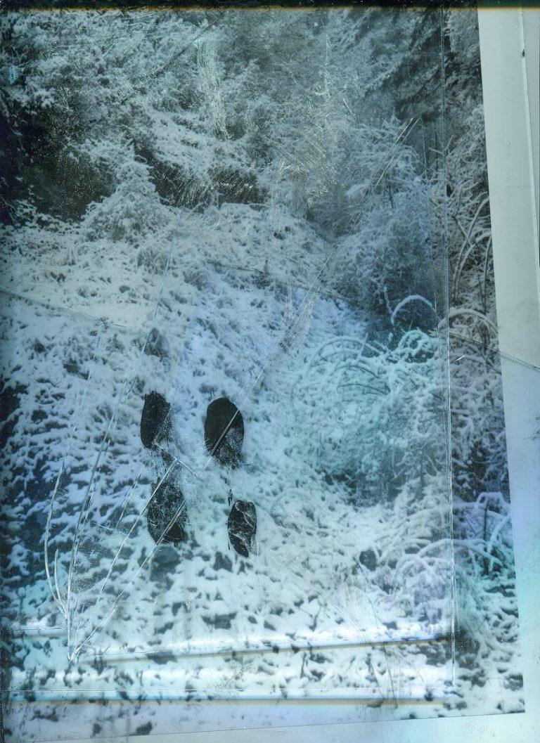 Total Screen I, 2021, Photography, pigment print on Hahnemühle fine art paper, 78 х 57 cm.