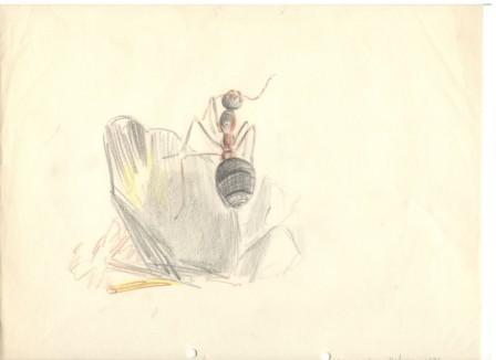 Рисунка композиция с мравка, 1936, цветни моливи/хартия, 22,6×29,2